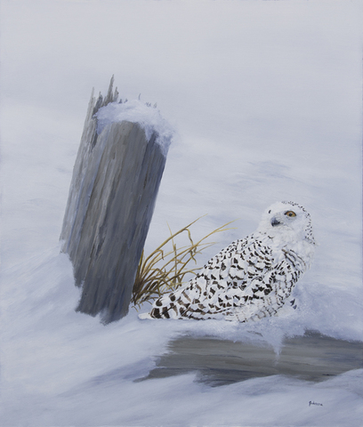 Oil painting of a snowy owl |