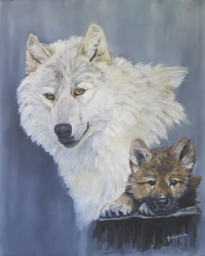 An white wolf portrait at 3yrs. and 3 mos. old.