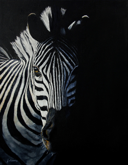 Original oil painting of a Zebra coming into the light.