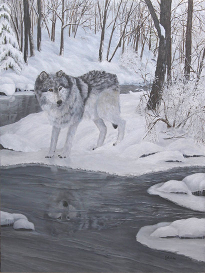 A lone grey wolf with his reflection in the water.