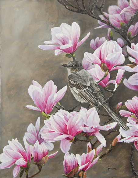Magnolias and Mockingbird Original oil painting by Johanna Lerwick Wildlife/Nature Artist.