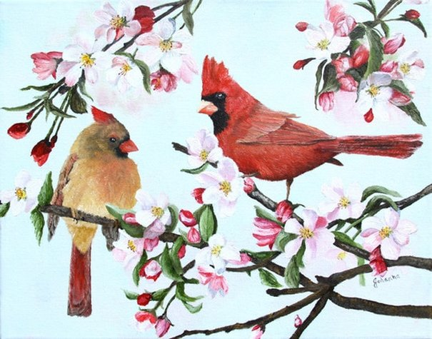 Giclee fine art print of a pair of cardinals in a flowering apple tree.