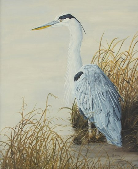 Oil painting of a Great Blue Heron at the marsh edge of a pond.