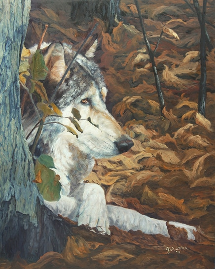 Painting of a resting grey wolf.